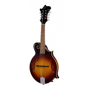 Is The Loar LM-590-MS B-Stock a good match for you?
