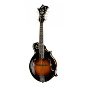 Is The Loar LM-600-VS B-Stock a good match for you?
