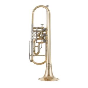"Take the ""IS IT GOOD FOR ME"" test for ""Thomann Classica II GMR Rotary Trumpet"", read the reviews and join the community!"
