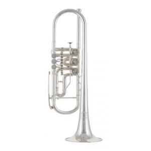 "Take the ""IS IT GOOD FOR ME"" test for ""Thomann Classica II GMS Rotary Trumpet"", read the reviews and join the community!"