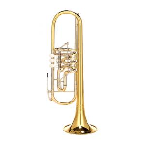 "Take the ""IS IT GOOD FOR ME"" test for ""Thomann Concerto ML Rotary Trumpet"", read the reviews and join the community!"