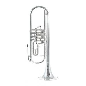 "Take the ""IS IT GOOD FOR ME"" test for ""Thomann Concerto MS Rotary Trumpet"", read the reviews and join the community!"