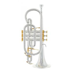 """Take the """"IS IT GOOD FOR ME"""" test for """"Thomann CR-960GP Superior Cornet"""", read the reviews and join the community!"""