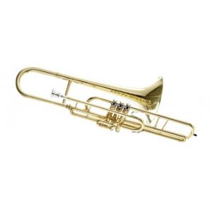 "Take the ""IS IT GOOD FOR ME"" test for ""Thomann MB-20 C- Valve Trombone short"", read the reviews and join the community!"