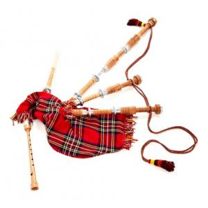 """Take the """"IS IT GOOD FOR ME"""" test for """"Thomann Mc Big Bagpipes Cocus B-Stock"""", read the reviews and join the community!"""