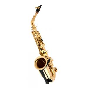 Is Thomann TAS-580 GL Alto Saxophone a good match for you?