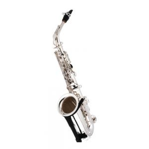 Is Thomann TAS-580 GS Alto Saxophone a good match for you?