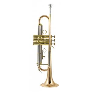 """Take the """"IS IT GOOD FOR ME"""" test for """"Thomann TR-5000 GL Bb- Trumpet"""", read the reviews and join the community!"""