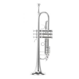 Is Thomann TR-500 S Bb-Trumpet B-Stock a good match for you?