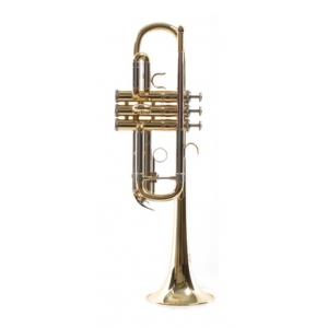 """Take the """"IS IT GOOD FOR ME"""" test for """"Thomann TR-600 GM C-Trumpet"""", read the reviews and join the community!"""