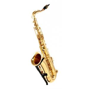 Is Thomann TTS-150 Tenor Saxophone a good match for you?