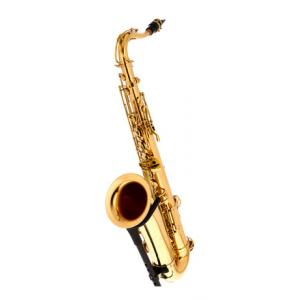 Is Thomann TTS-180 Tenor Saxophone a good match for you?