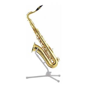 Is Thomann TTS-350 Tenor Saxophone a good match for you?