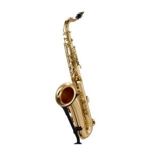 Is Thomann TTS-580 GL Tenor Saxophone a good match for you?