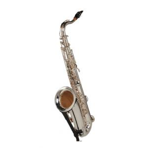 Is Thomann TTS-580 GS Tenor Saxophone a good match for you?