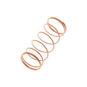 Is Thomann Valve Spring 16x39,5 a good match for you?