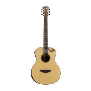 Is Traveler Guitar Traveler CL-3E Spruce Top a good match for you?