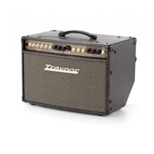 Is Traynor AM Standard Acoustic Combo a good match for you?