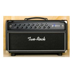 Is Two Rock Bi-Onyx 50 Head SS a good match for you?