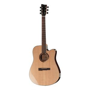 Is VGS R-10 CE Rose NG B-Stock a good match for you?