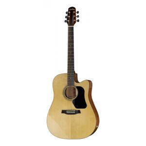 Is Walden D350CE G Standard NT a good match for you?