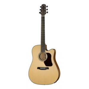 Is Walden D550CE G Natura B-Stock a good match for you?