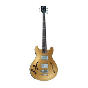 Is Warwick RB StarBass 4 Gold Metallic LH a good match for you?