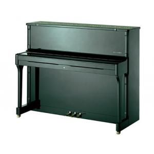 Is Wilh. Steinberg IQ 24 Piano Black Polish the right music gear for you? Find out!