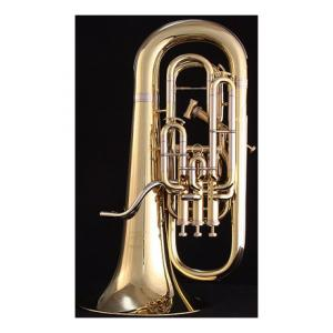 Is Willson 2960 TA-UK Euphonium a good match for you?
