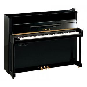 """Take the """"IS IT GOOD FOR ME"""" test for """"Yamaha b2 SG2 PE B-Stock"""", read the reviews and join the community!"""