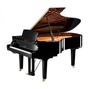 """Take the """"IS IT GOOD FOR ME"""" test for """"Yamaha C6X SH PE Silent Grand Piano"""", read the reviews and join the community!"""