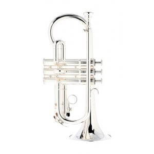 """Take the """"IS IT GOOD FOR ME"""" test for """"Yamaha YCR-2610 SIII Cornet"""", read the reviews and join the community!"""