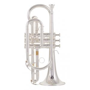 """Take the """"IS IT GOOD FOR ME"""" test for """"Yamaha YCR-4330 GSII Cornet"""", read the reviews and join the community!"""