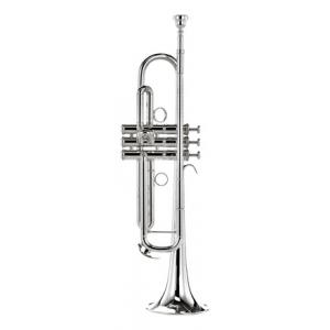 Is Yamaha YTR-8345RS 02 Trumpet a good match for you?