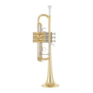 """Take the """"IS IT GOOD FOR ME"""" test for """"Yamaha YTR-8445 04 Trumpet"""", read the reviews and join the community!"""