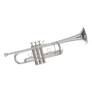 """Take the """"IS IT GOOD FOR ME"""" test for """"Yamaha YTR-8445 GS Trumpet"""", read the reviews and join the community!"""