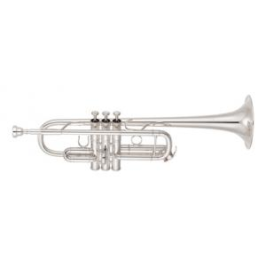 """Take the """"IS IT GOOD FOR ME"""" test for """"Yamaha YTR-8445 S 04 Trumpet"""", read the reviews and join the community!"""