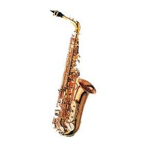 """Take the """"IS IT GOOD FOR ME"""" test for """"Yanagisawa A-902 Alto Saxophone"""", read the reviews and join the community!"""